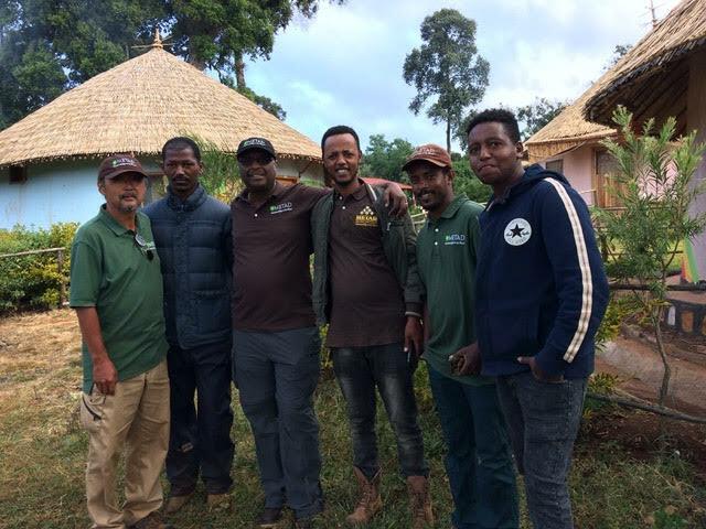 コーヒー豆 エチオピア ETHIOPIA Hambela Alaka Sun dried 100g