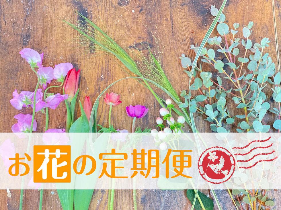 母の日 / 季節お花定期便・12回(毎月20日ごろお届け)[配送料込]