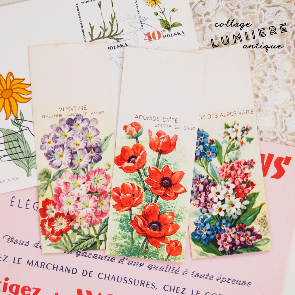 seed packet a
