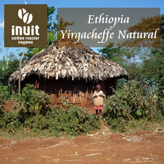 エチオピア イルガチェフェ ナチュラル 200g<シティロースト>