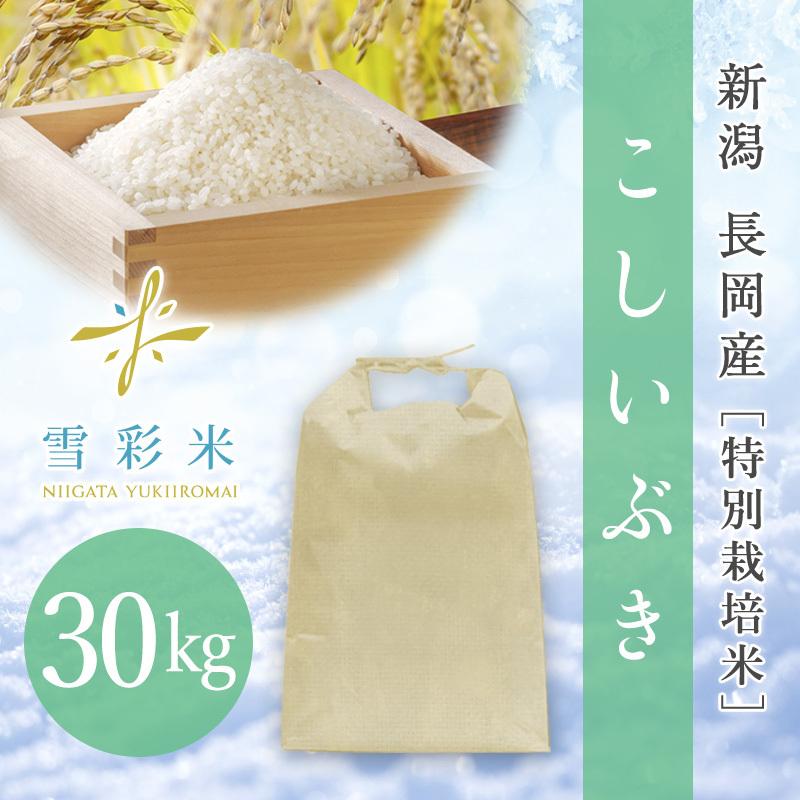 【雪彩米】長岡産 特別栽培米 新米 令和2年産 こしいぶき 30kg