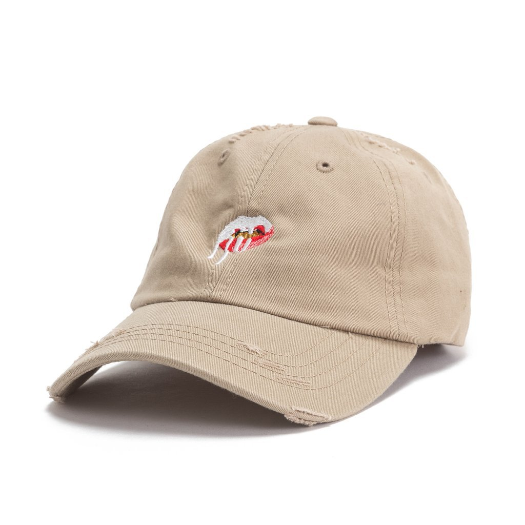 LIPS DAD HAT