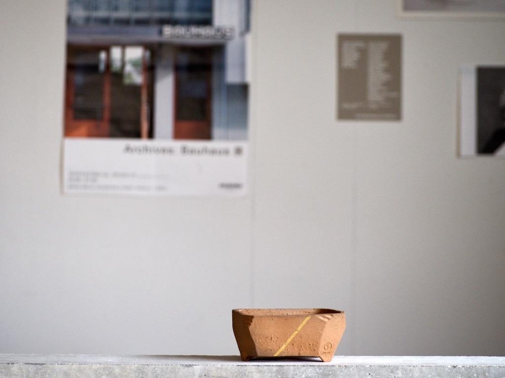 澪標  /  SS / Bonsai Pot [ パーシモン+金ライン ] No,0210