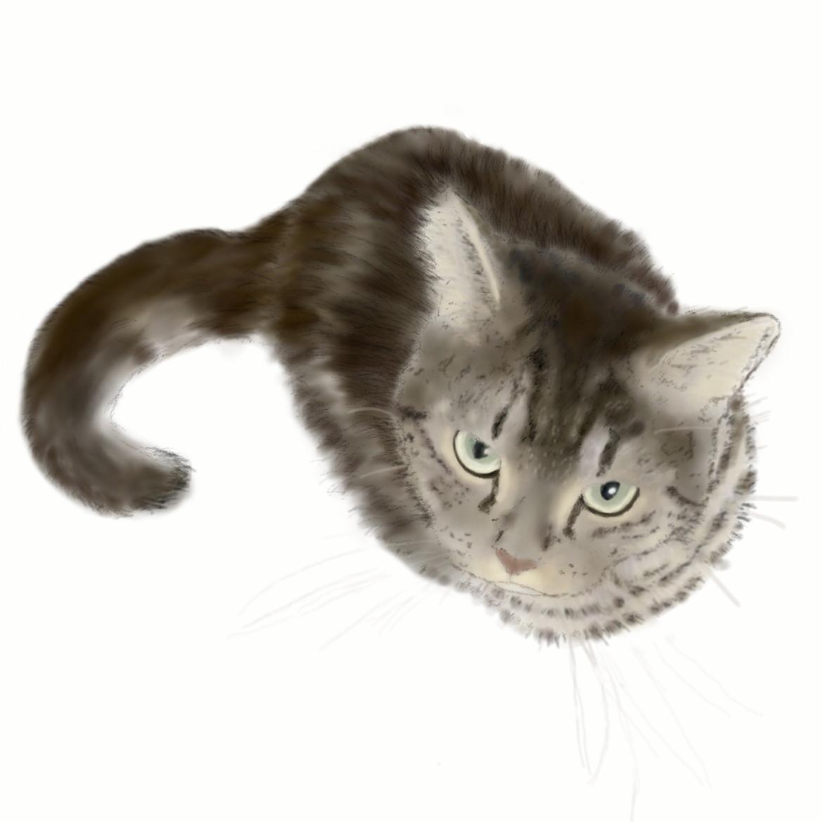 絵画 絵 ピクチャー 縁起画 モダン シェアハウス アートパネル アート art 14cm×14cm 一人暮らし 送料無料 インテリア 雑貨 壁掛け 置物 おしゃれ ネコ ねこ 猫 動物 アニマル キャット  デジタルアート ロココロ 画家 : rune 作品 : ぼくとあそんで