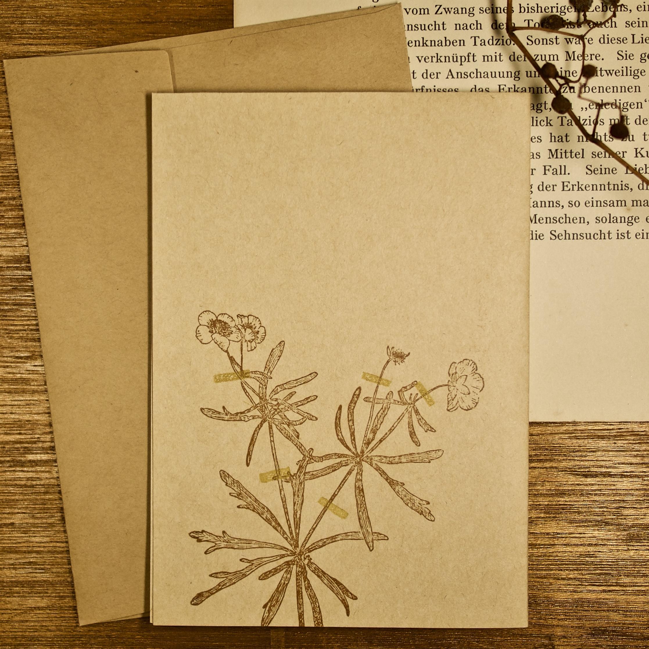 greeting card アンティーク押し花 キンポウゲ 14.8×10.5cm(二つ折り時)