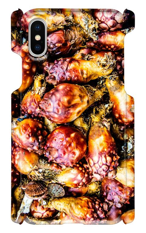 【 iPhoneX用 】ホヤ お魚スマホケース 送料込み
