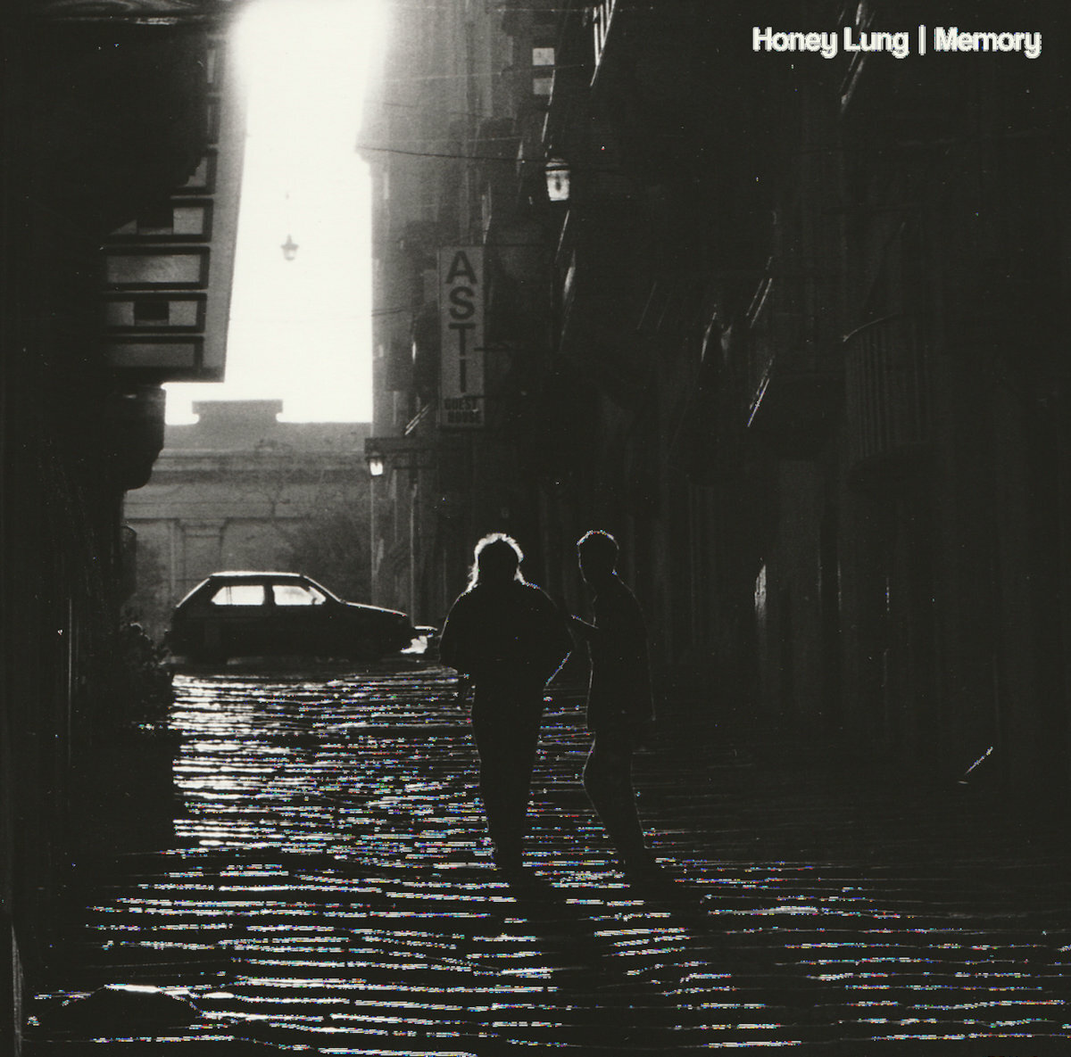 Honey Lung / Memory(500 Ltd LP)