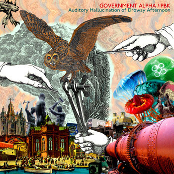 Government Alpha / PBK ‎– Auditory Hallucination Of Drowsy Afternoon(CD)