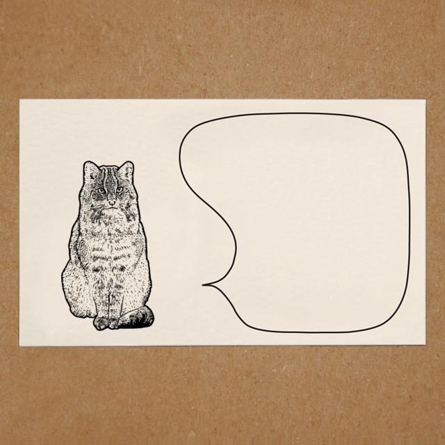メッセージカード(ヤマネコ)