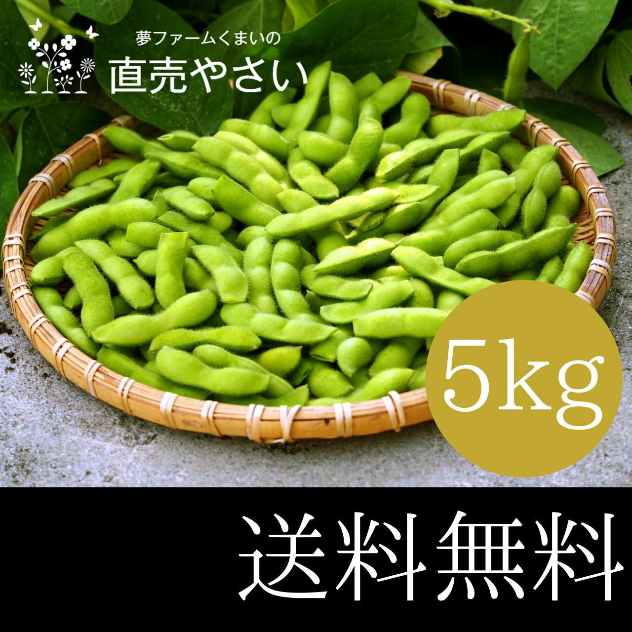 枝豆 大量 5kg  送料無料 ジャスト75 恋姫 晩酌茶豆 肴豆