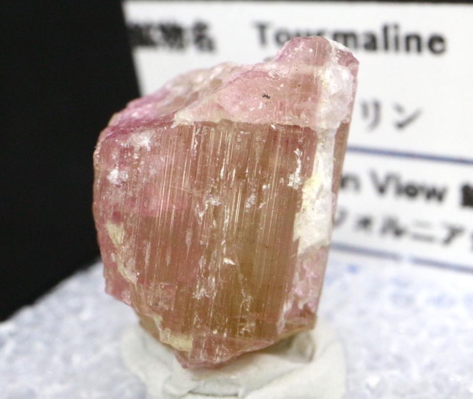 自主採掘!ケース入り ピンクトルマリン カリフォルニア産 3,6g T084 鉱物 天然石 原石 パワーストーン