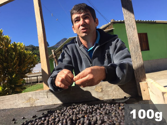 ブラジル   フォルキーリャ・ドゥ・リオ農園 ナチュラル   コーヒー豆100g