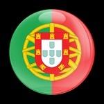 ゴーバッジ(ドーム)(CD0204 - FLAG PORTUGAL) - 画像1