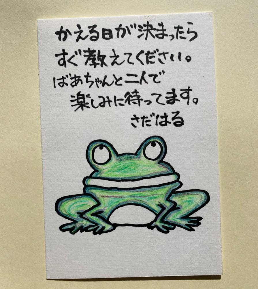 越前和紙はがき・ぬり絵手紙・望郷セット