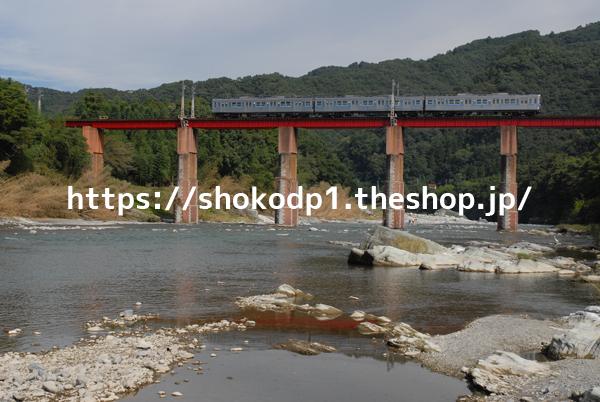 秩父鉄道5000系と川DSC_0140