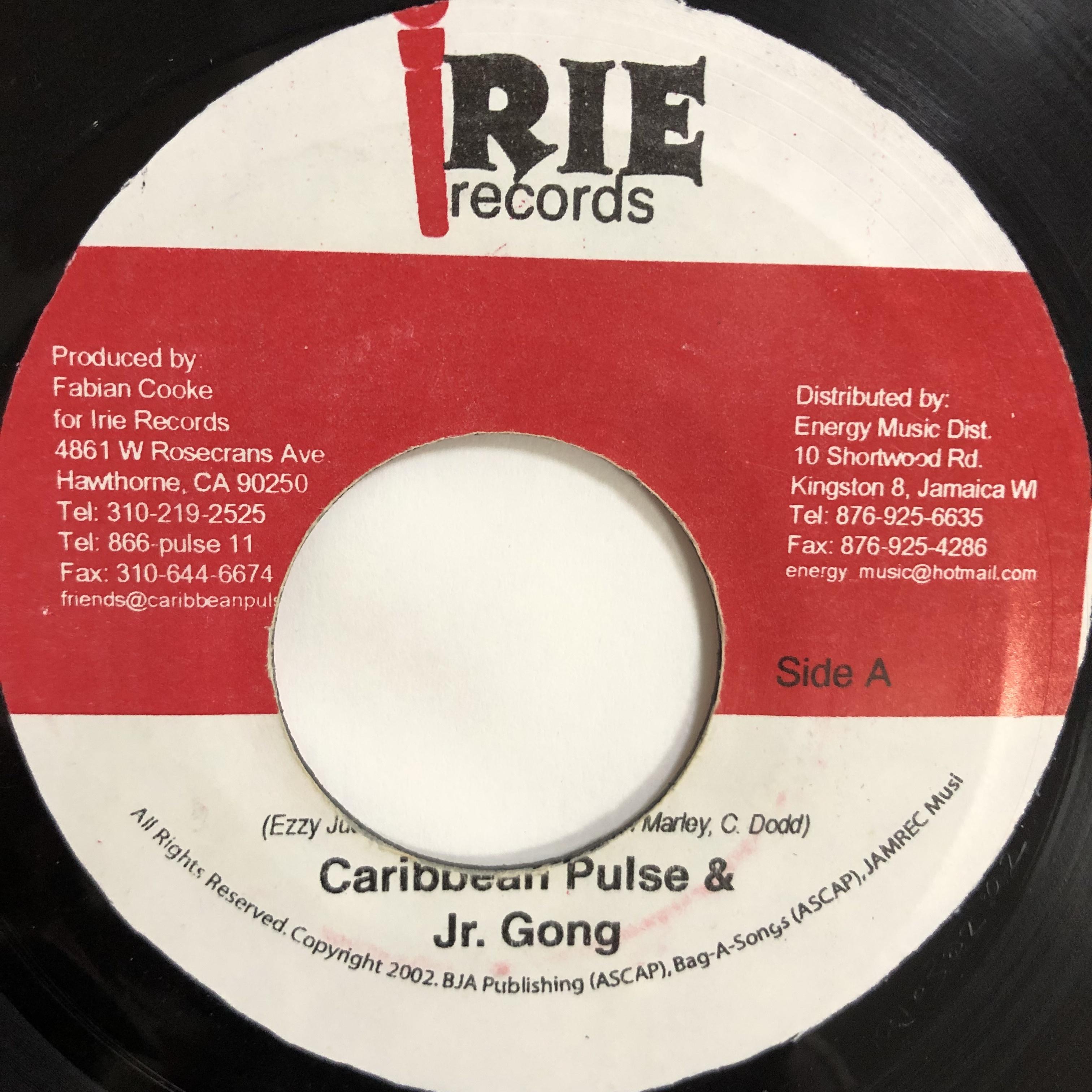 Caribbean Pulse & Jr. Gong - Jah Is My Rock【7-20209】