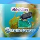 シールディング[Shielding]『光の保護膜を張る』