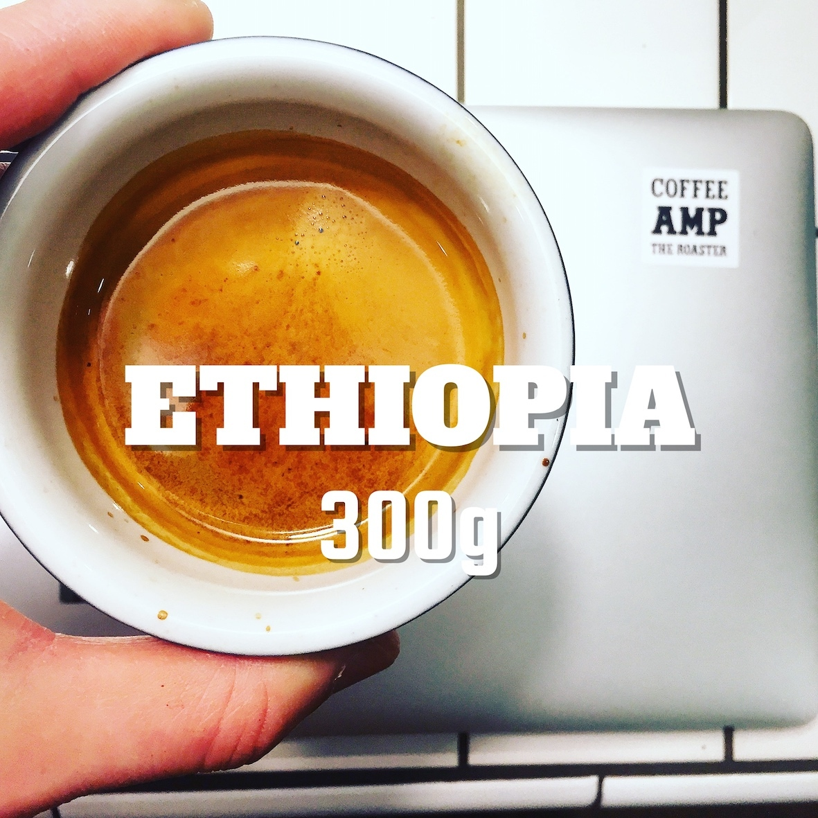 エチオピア イルガチェフ ウォルカ 300g
