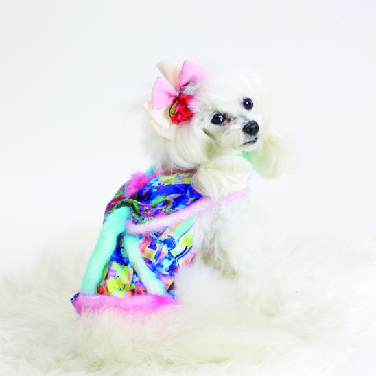 jibun-fuku DOG 【ドレス】DOGDR2018169