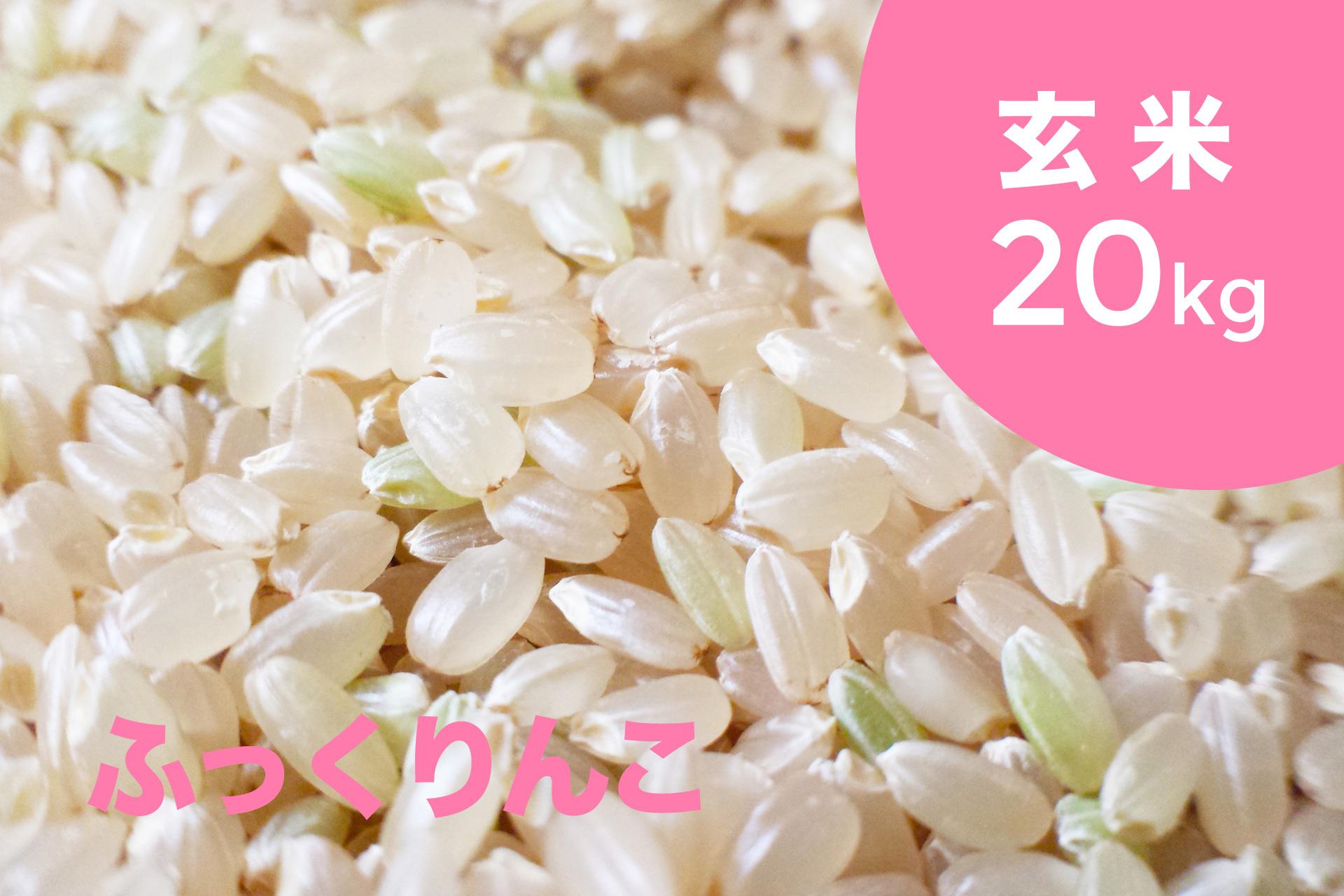 特別栽培米 ふっくりんこ(玄米)20kg【令和2年産】