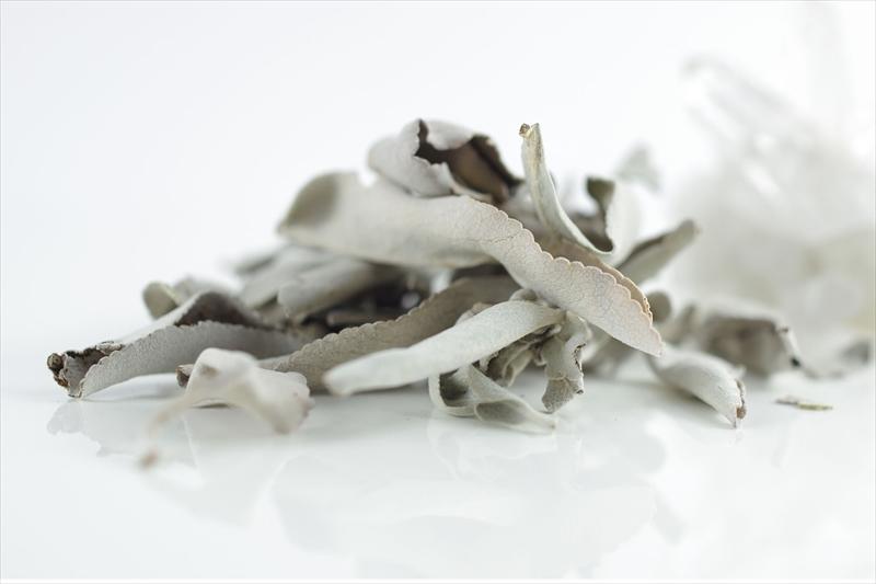 浄化用ホワイトセージ5g - 画像2