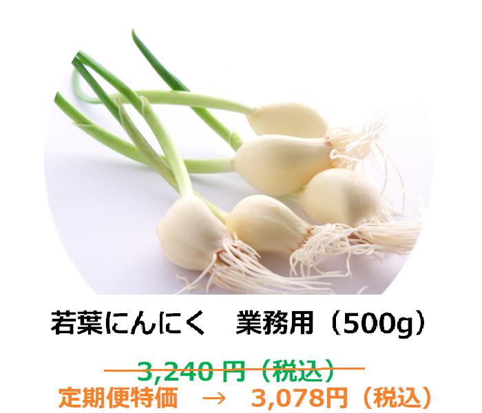 【1ヶ月定期便商品】若葉にんにく 業務用(500g)【埼玉県産】