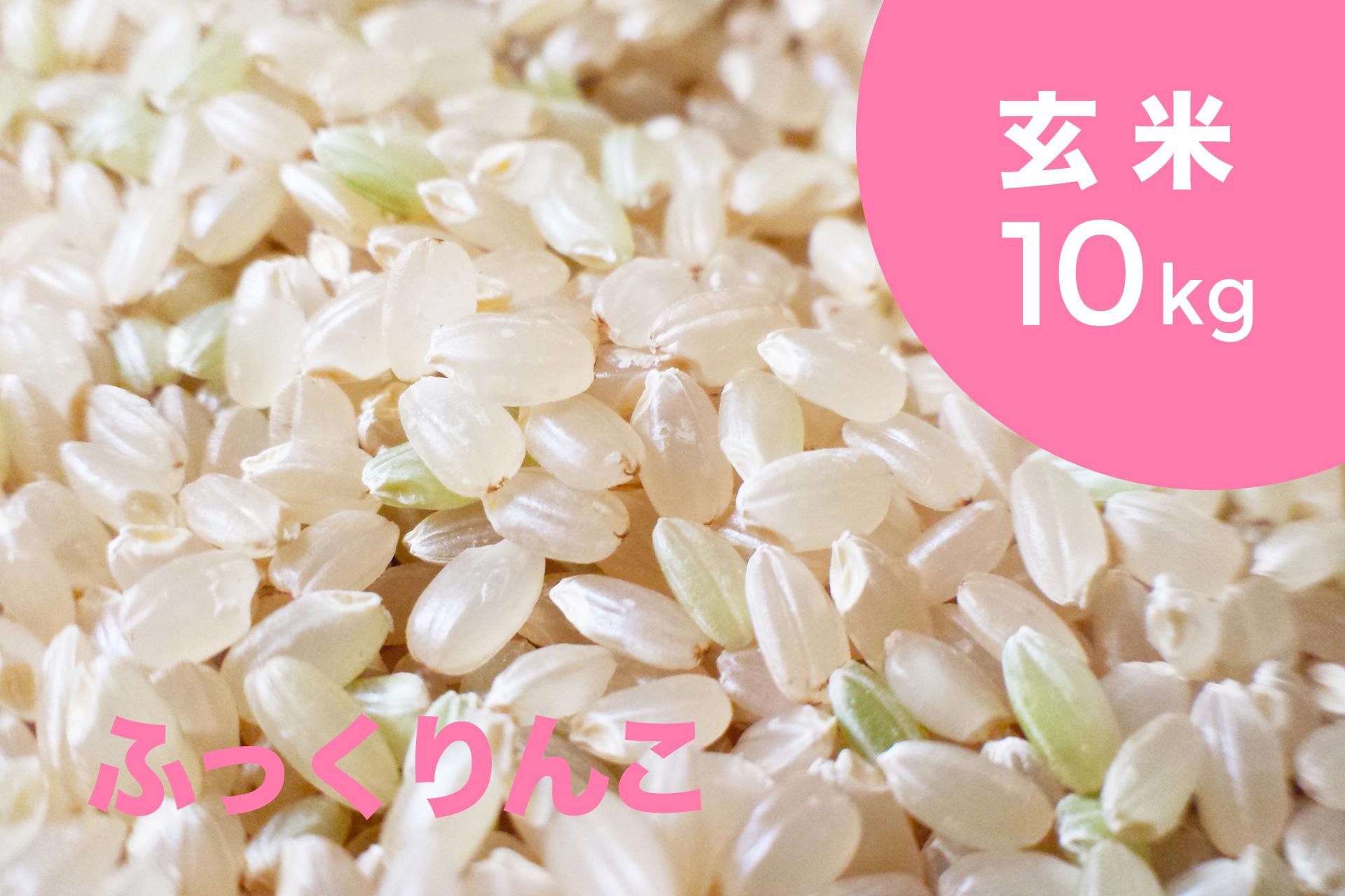 新米予約受付中!!【令和2年産】特別栽培米 ふっくりんこ(玄米)10kg