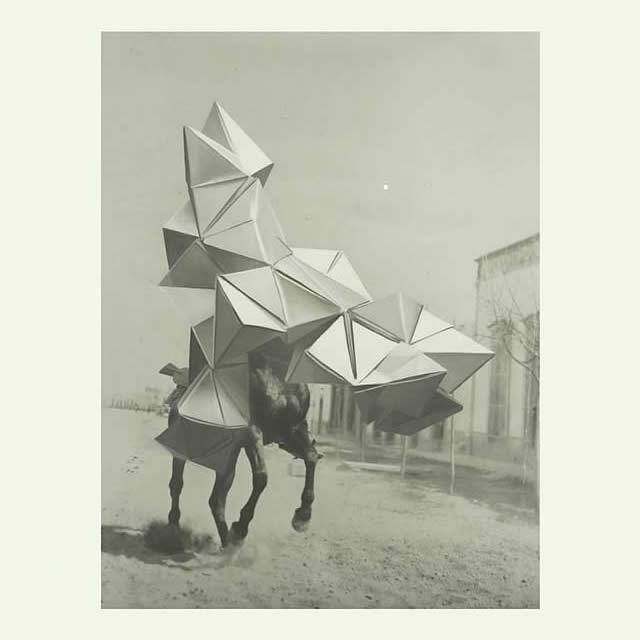 Estampida |  Victor Herrero