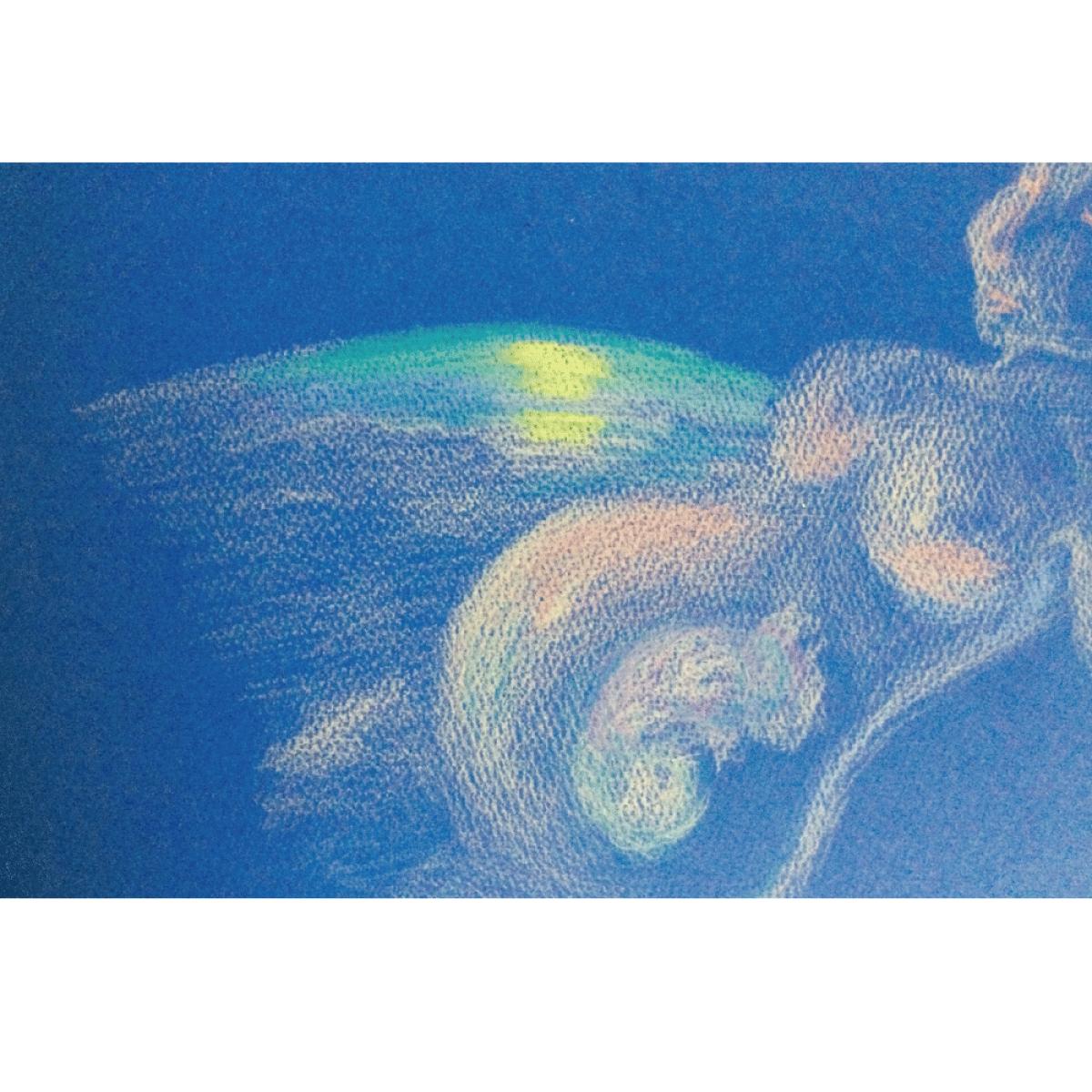 【ポストカード】母月