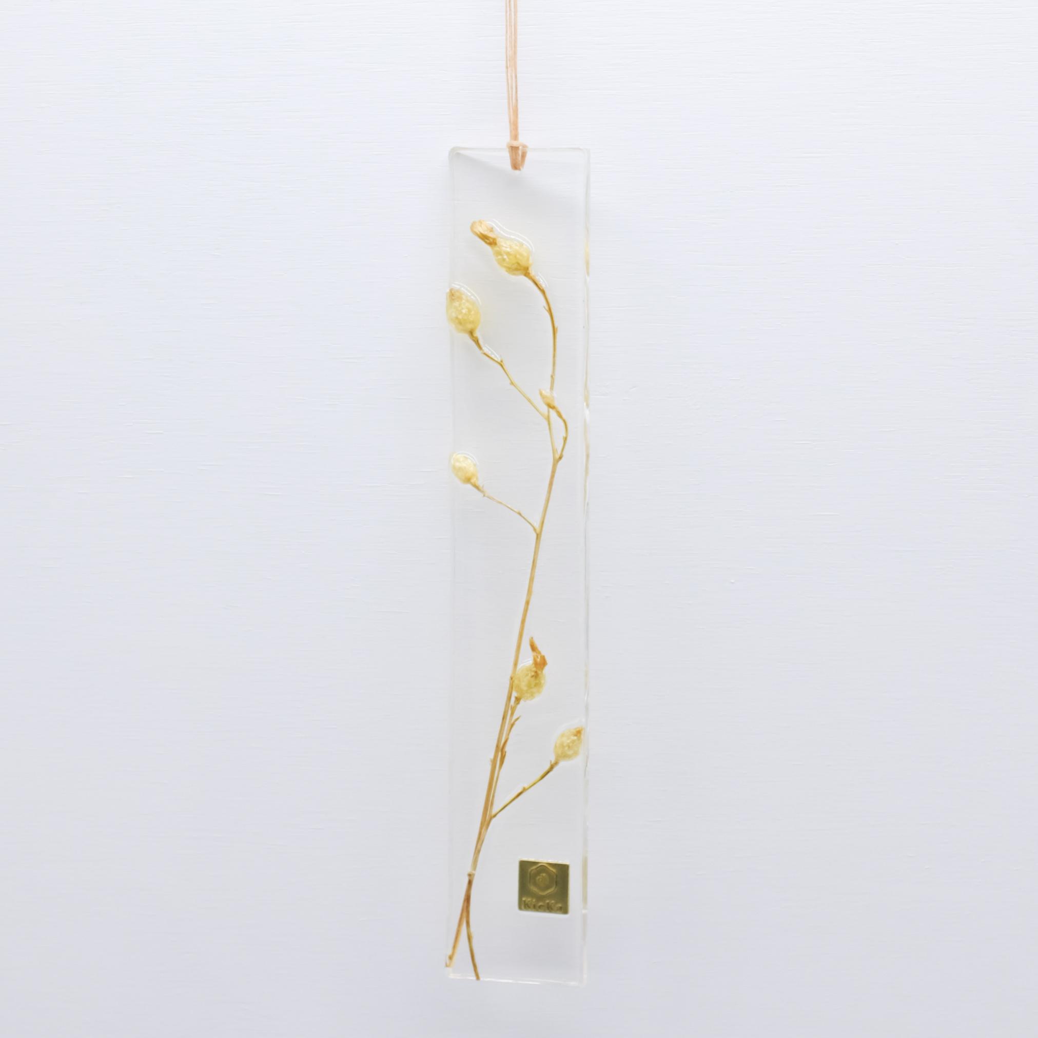 dried flower S サルシーオ