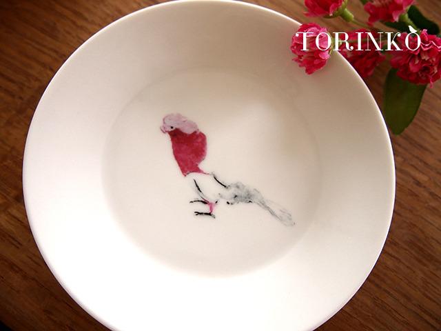 モモイロインコ お皿 中サイズ(鳥・オウム・インコ)