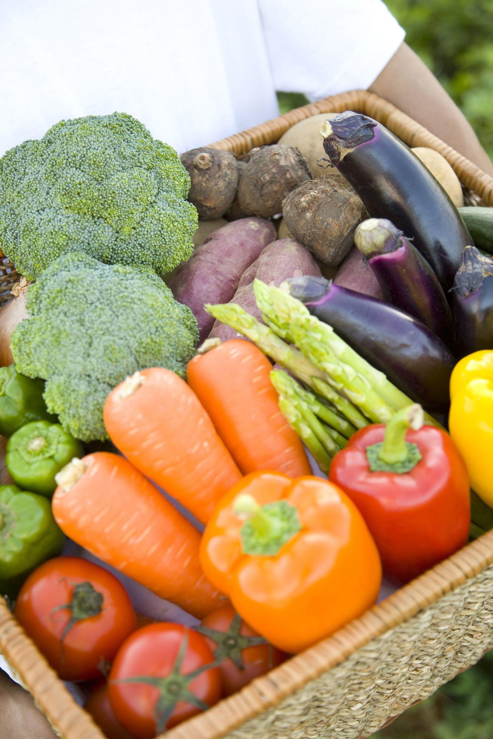 初回限定 旬のお野菜 お試しセット