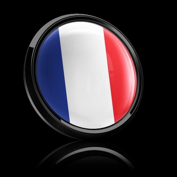 ゴーバッジ(ドーム)(CD0177 - FLAG FRANCE) - 画像2