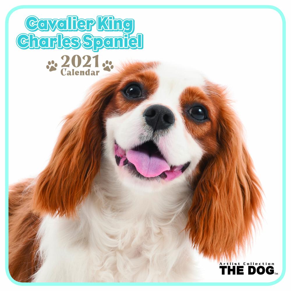 2021年 THE DOGミニカレンダー【ミニサイズ】 キャバリア・キング・チャールズ・スパニエル(ミニ)