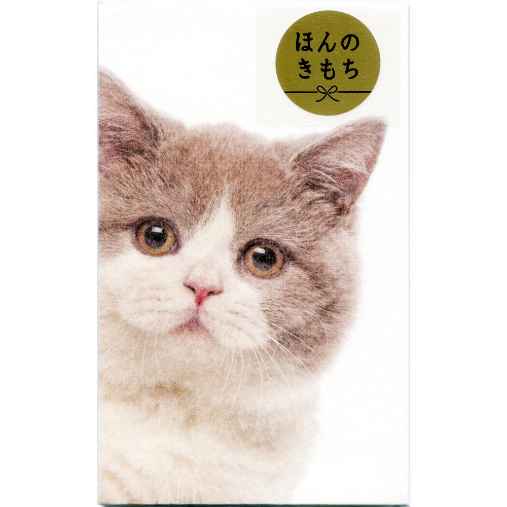 猫ぽち袋(ひょっこりニャンコ)ハチワレネコ