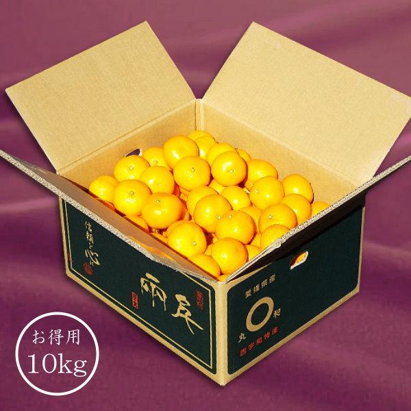 「日の丸みかん 千両 良品」Mサイズ 10kg