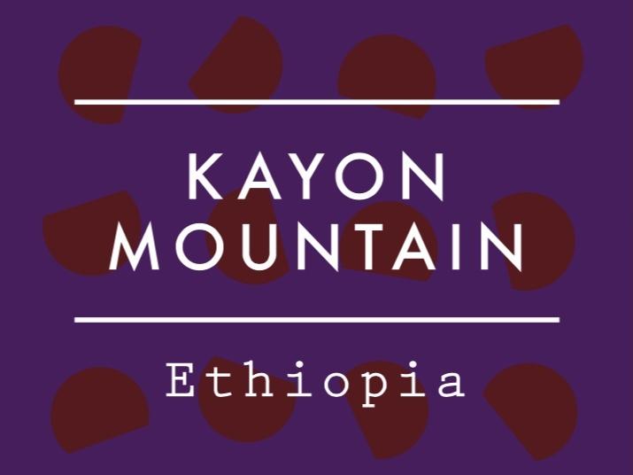 【100g】エチオピア  /  KAYON MOUNTAIN  Natural