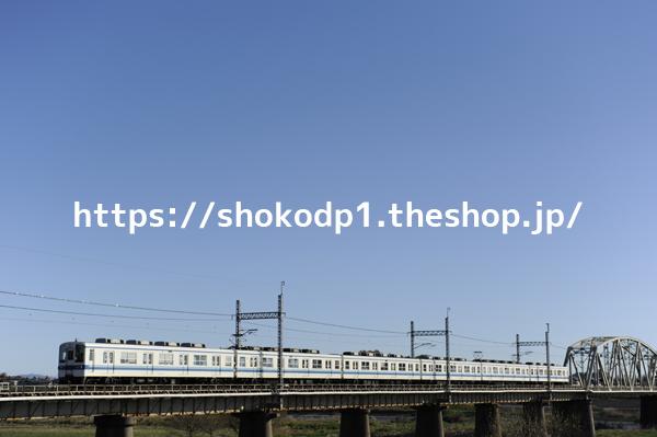 東武8000系・野田線と空_DSC9229