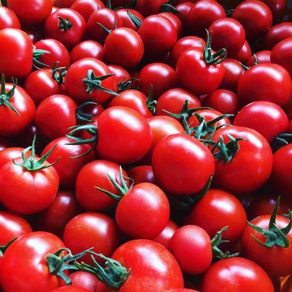 とまとやよずべえのトマトジュース(大) 500ml 2本