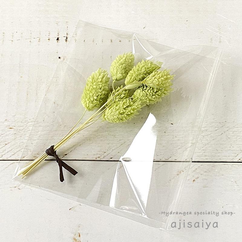 春のパステル花材 <ポアプランツ> カラードライフラワー