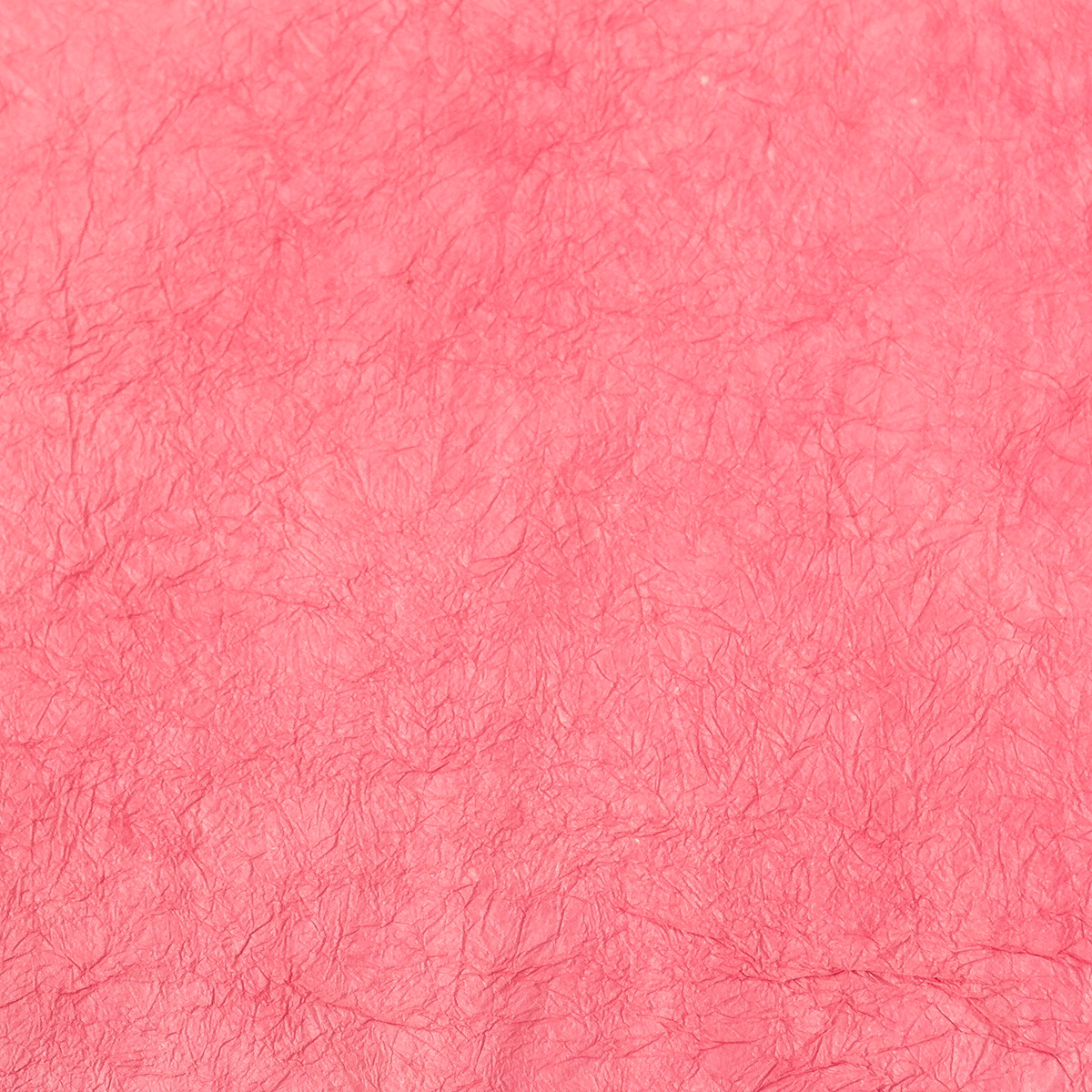 王朝のそめいろ 薄口 18番 中紅花