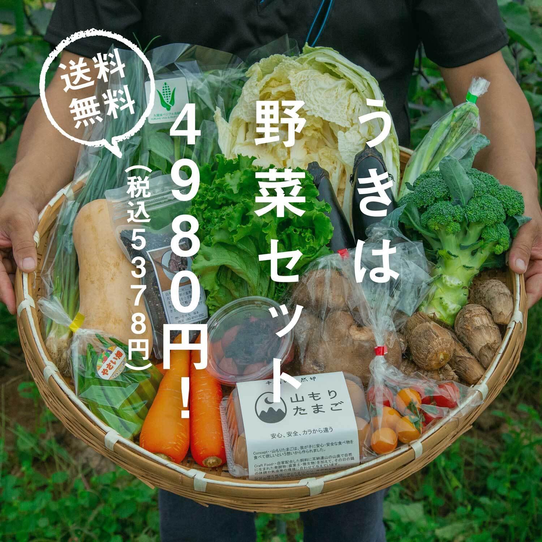 うきはの野菜セット【クール便送料無料!】