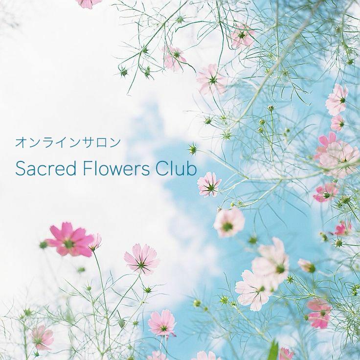 オンラインサロン『Sacred Flowers Club』(月額制)