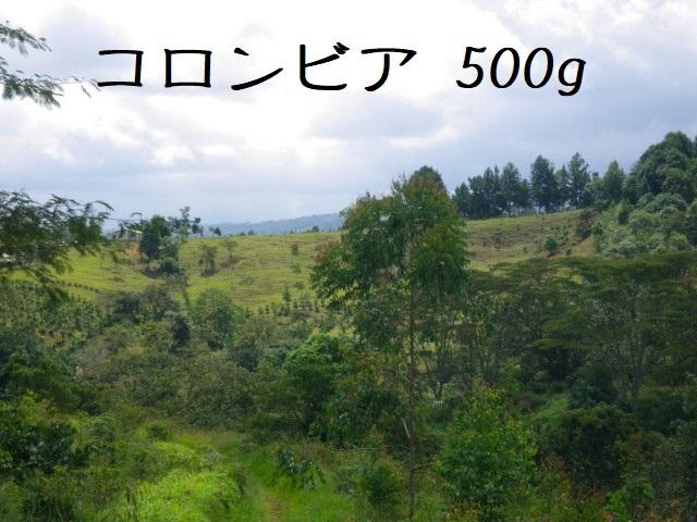コロンビア サントゥアリオ 中煎り 500g