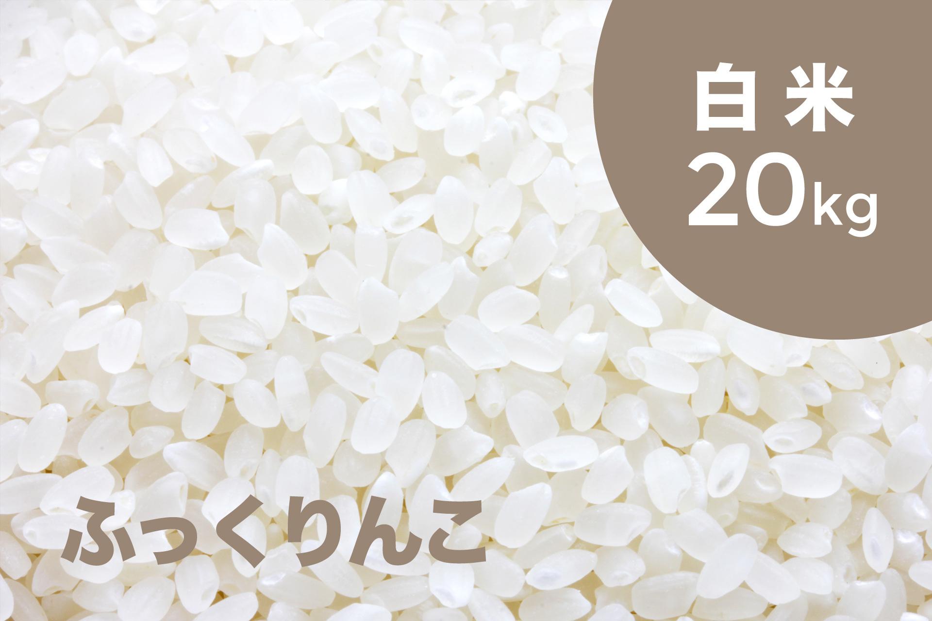 特別栽培米 ふっくりんこ(白米)20kg【令和2年産 】
