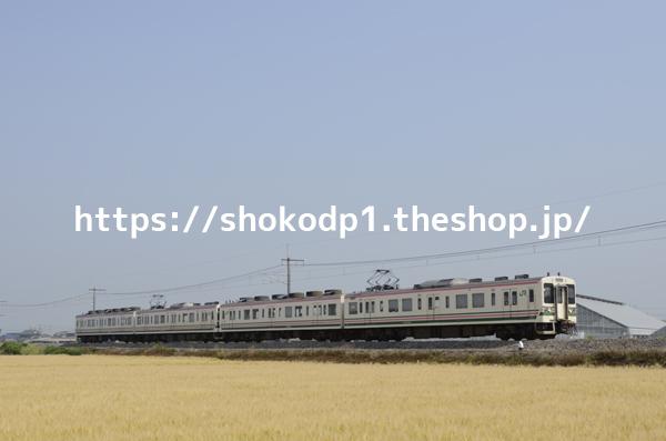 107系と田園風景_DSC3139