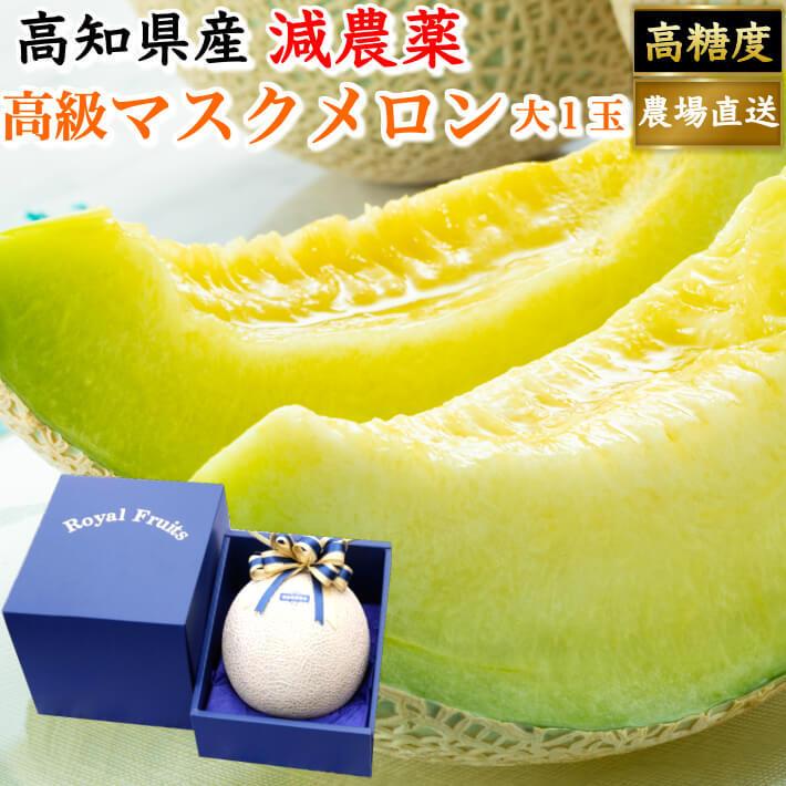 贈答用 高級ギフト箱 マスクメロン 大玉(約1,5kg) お取り寄せ ギフト フルーツ 果物 高知県産 送料無料