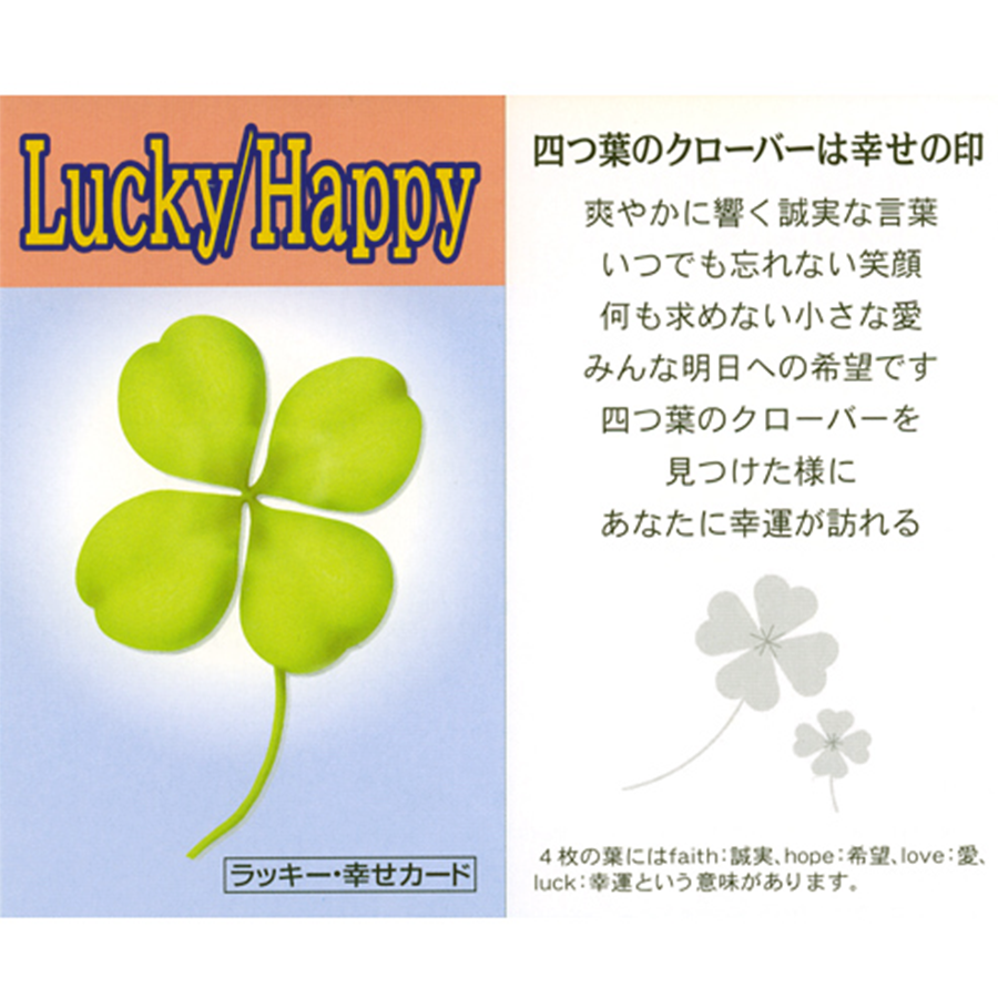 【幸運・恋愛・金運・健康・長寿・成就】ラッキーカラフルブレスレット(ラッキー・幸せカード付き)