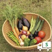 定期便*月1回お届け3ヶ月コース【S】季節のお野菜おまかせボックスSサイズ