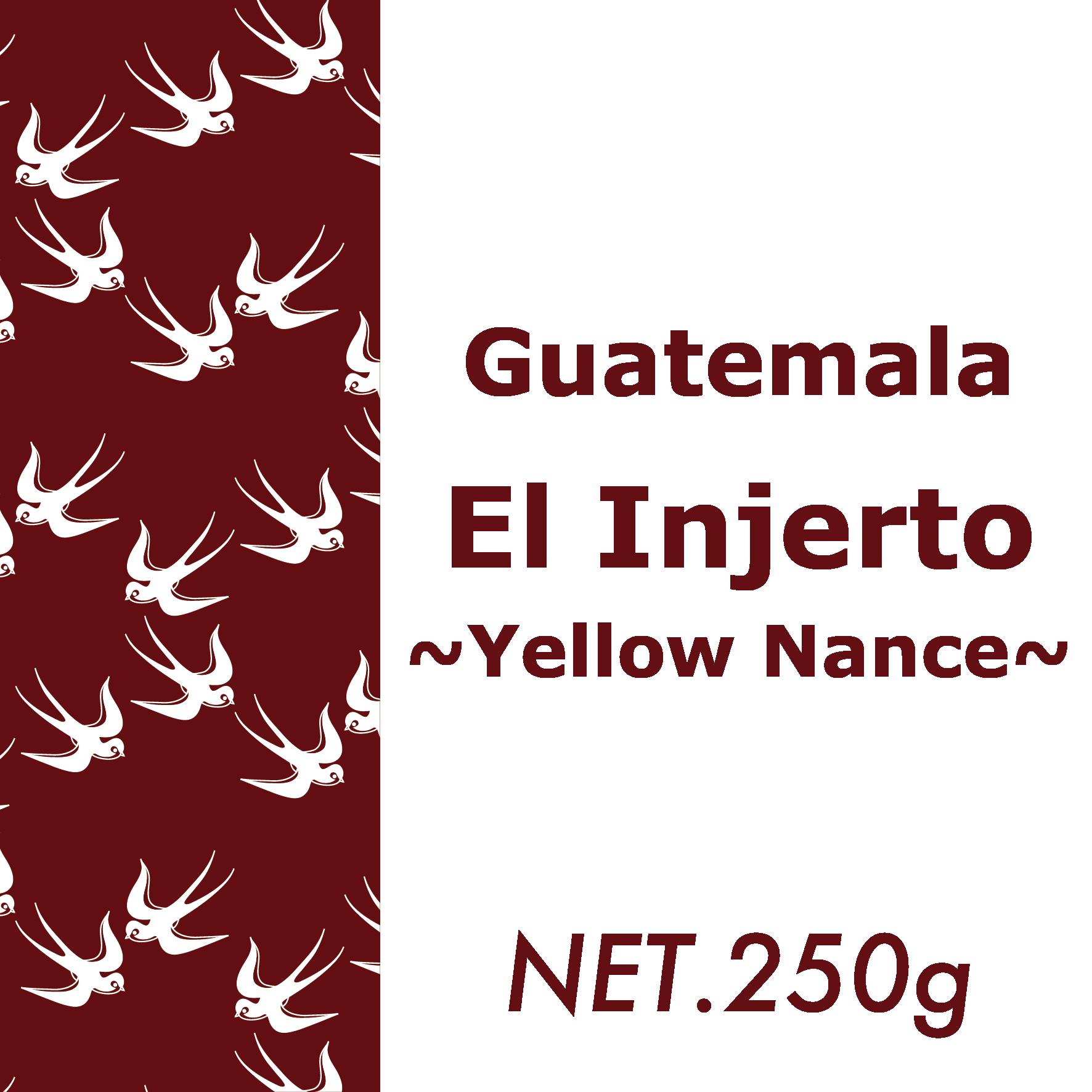 250g グアテマラ・エル インヘルト農園イエローナンス